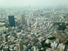 Vast city sprawl is similar to NYC
