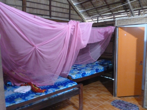 Mosquito nets will save us from malaria!