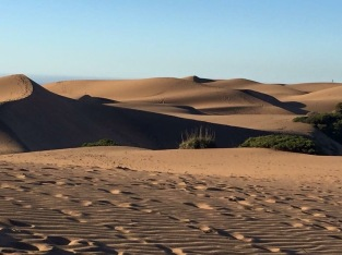 Desert-like dunes of Concón and a great sunset view of the South Pacific
